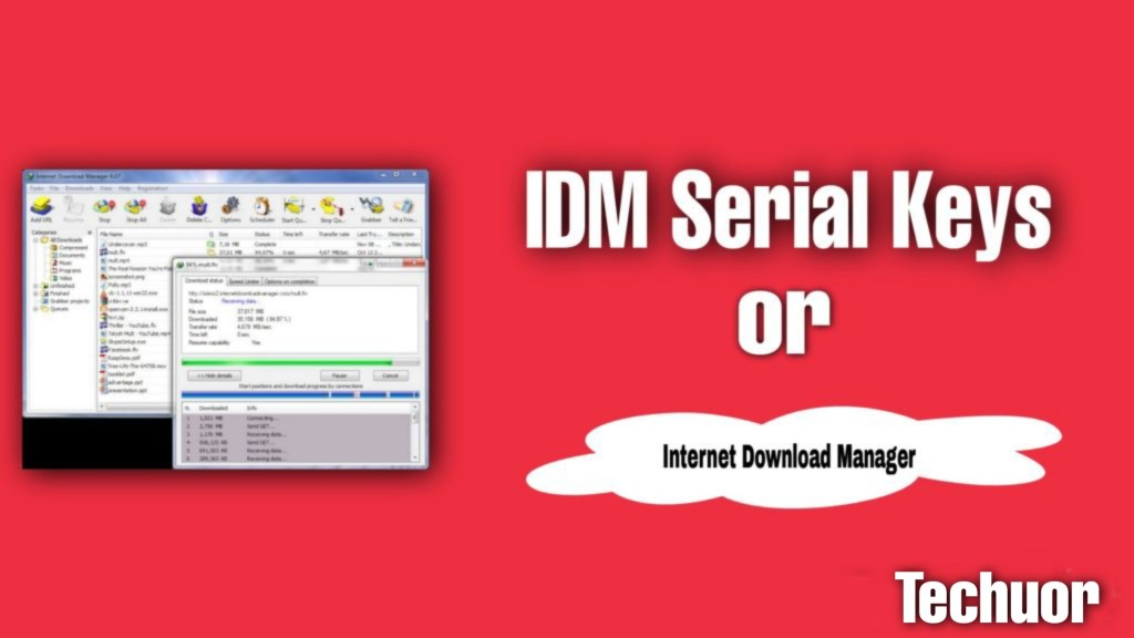 IDM Download With Key